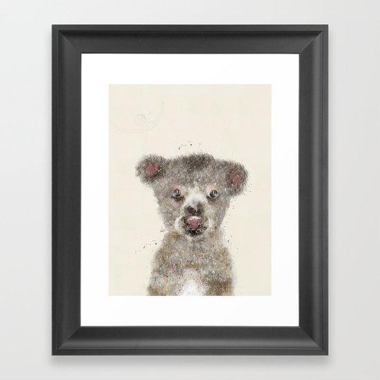 little koala Framed Art Print