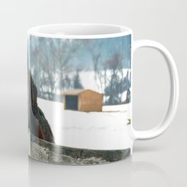 Thoughtful Horse Coffee Mug