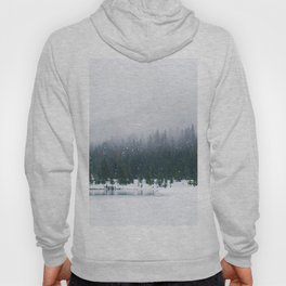 Evergreen Winter Forest (Color) Hoody