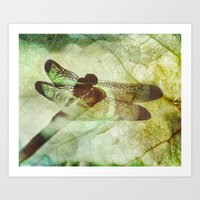 dragonfly Art Prints featuring Dragonfly by SpaceFrogDesigns