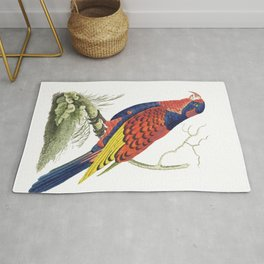 Indian lory  from The Naturalists Miscellany (1789-1813) by George Shaw (1751-1813) Rug