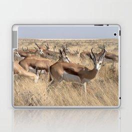 Springbok herd - Greg Katz Laptop & iPad Skin