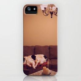 Dog in Luxury iPhone Case