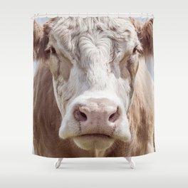 Animal Photography | Cow Portrait Colour | Minimalism | Farm Animals Shower Curtain
