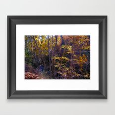 Walking by the river Framed Art Print