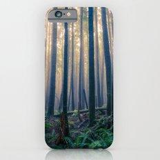 Tillamook Head iPhone 6s Slim Case