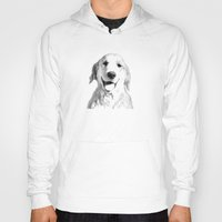 golden retriever Hoodies featuring Amber // Golden Retriever by Dog of Art