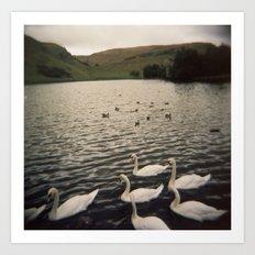 loch Art Print