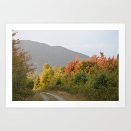 """Country Roads"" Art Print"