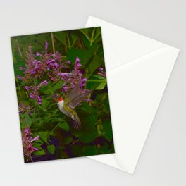 Male ruby-throated hummingbird and agastache 45 Stationery Cards