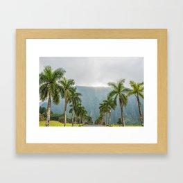 Hawaii Palm Tree Road In Fog Framed Art Print