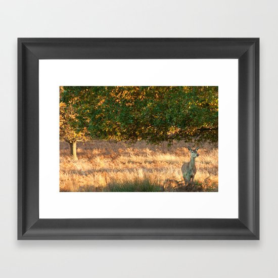 On The Watch Framed Art Print