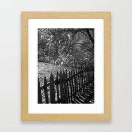 The Fenceline Framed Art Print