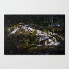 Strbacki Buk 3 Canvas Print