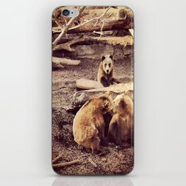 Bear with me... iPhone Skin
