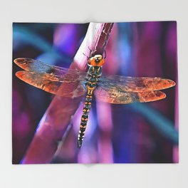 Dragonfly In Orange and Blue Throw Blanket
