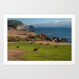 Cows on Cliffs Art Print