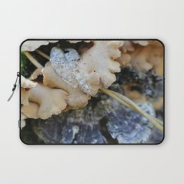 Mushroom 4 Laptop Sleeve