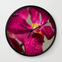 orchid Wall Clocks featuring Orchid by Michelle McConnell