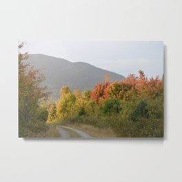 """Country Roads"" Metal Print"
