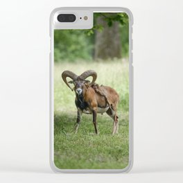 Your World Clear iPhone Case
