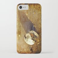 seashell iPhone & iPod Cases featuring Seashell by Svetlana Sewell