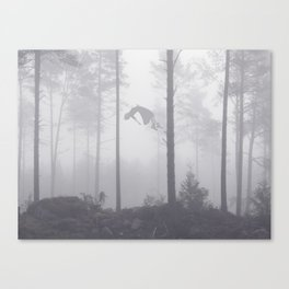 Falling Up Canvas Print