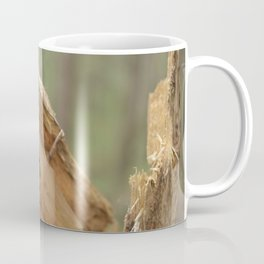 broken tree Coffee Mug