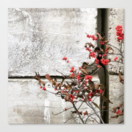 Holly Jolly Canvas Print