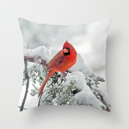 Cardinal on a Snowy Branch Throw Pillow