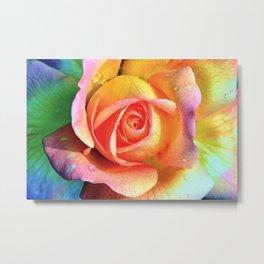 LGBT rose Metal Print