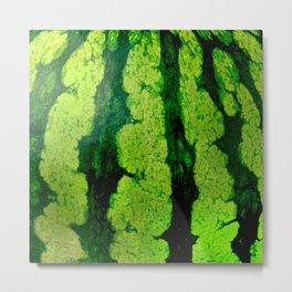 Watermelon skin texture Metal Print