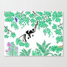 Rainforest Madagascar Canvas Print
