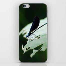 Iridescent Damselfly iPhone Skin