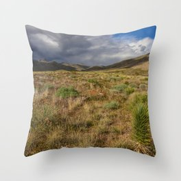 Painted_Desert 2073 - Southwest USA Throw Pillow