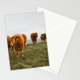 COWS Stationery Cards