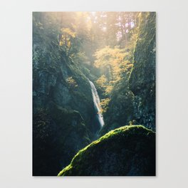 The View! Canvas Print