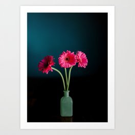 Hot Pink Gerbera Daisies in a jade vase Art Print