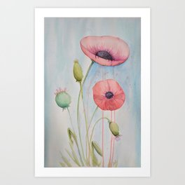 Sheila's Poppies Art Print