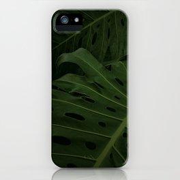Monstera IIII iPhone Case