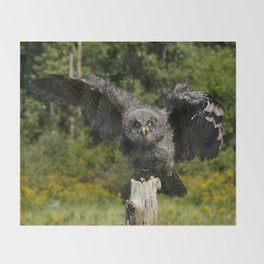 Baby Great Gray Owl Throw Blanket