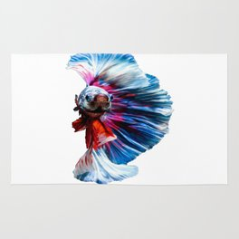 Magnificent Betta Splendens Freshwater Fish Rug