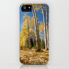 Crested Butte Colorado Fall Colors Panorama - 3 by OLena Art iPhone Case