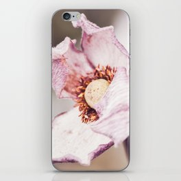 Still in Winter 2 iPhone Skin