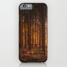 SUNSET IN THE FOREST iPhone 6s Slim Case