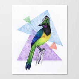 Alternative Jay Canvas Print