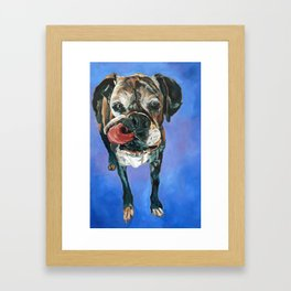 Baron the Boxer Dog Portrait Framed Art Print