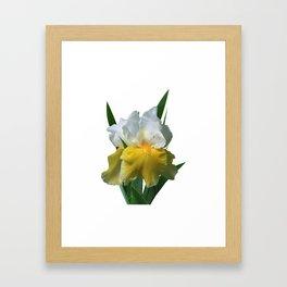 Iris 'Play to Win' Framed Art Print