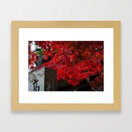 Red leaves in Japan cemetery Framed Art Print
