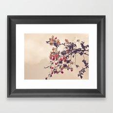 Dream of Flowers Framed Art Print